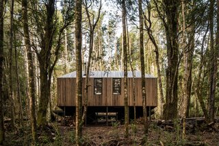 The Impluvium Refuge is set in a dense, tall Chilean forest within the Huilo-Huilo Biological Reserve.