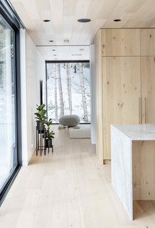 Framed view of birch trees through family room
