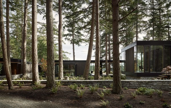 The home features a flat roofline, and it's composed of stained red cedar, concrete, and basalt—materials that weather well and blend seamlessly with the land.