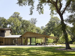 A Tranquil Home Takes Root in a Glorious Grove of Oak Trees