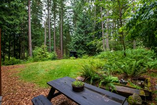 Surrounded by a thick forest, the property has a lovely private picnic area. The low-maintenance meadow grass does not require any mowing.