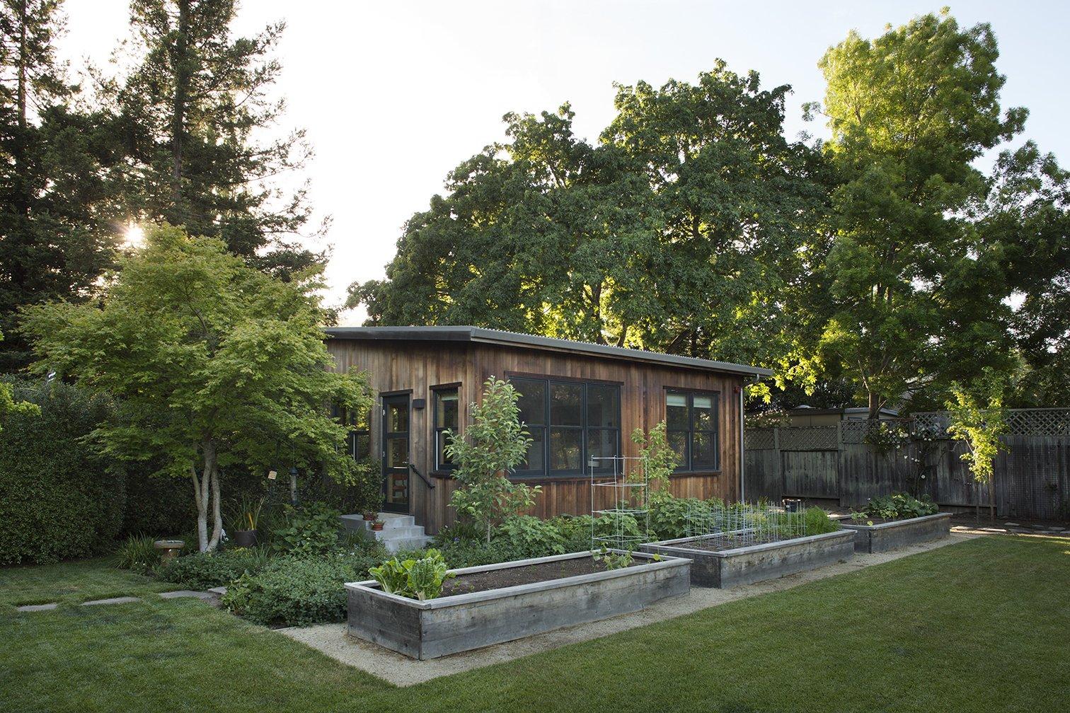 Paluska House Feldman Architecture guest cottage exterior