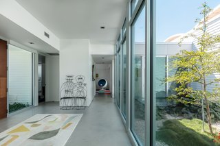 The courtyard is the first thing a visitor sees upon entering the Schechter family's Sarasota Modern home, highlighting the connection between inside and out that is so important to living in Florida.