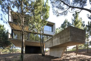 The pool is lifted up from the forest floor to the level of the home on a single concrete fin.