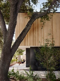 The site was constrained by the root system of the mature trees, along with parking requirements, leading to a massing of two stacked boxes, with the larger upper level creating an overhang.