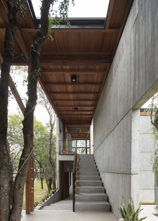 Concrete stairs leading down to the barbecue area and up to the home office.