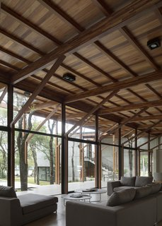 The regularly spaced structural columns impose order on the irregular footprint and, along with the trees on site, helped to define the floor plan.