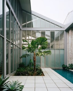 The clients had a very clear brief for the outdoor areas. The courtyard was to have at least one large palm tree, which would be clearly visible from the living space, and it was important that the space could be viewed from above and also below from the street entry.