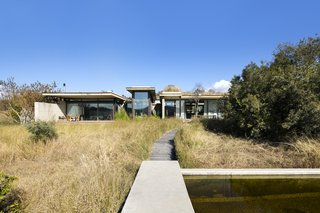 A timber boardwalk through the veld grass leads to a 15-meter, reed-filtration lap pool.