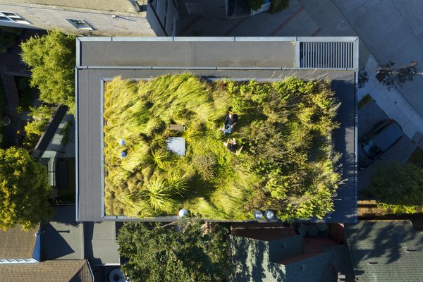 Aidlin Darling Design recasts an unremarkable midcentury home as a multigenerational retreat crowned by a living roof.