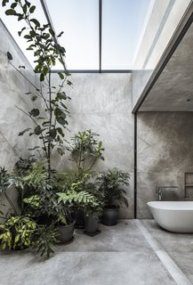 The bathroom has been entirely clad in large Fior di Bosco marble panels, creating a simple backdrop for the arrangement of plants overlooked by the tub.