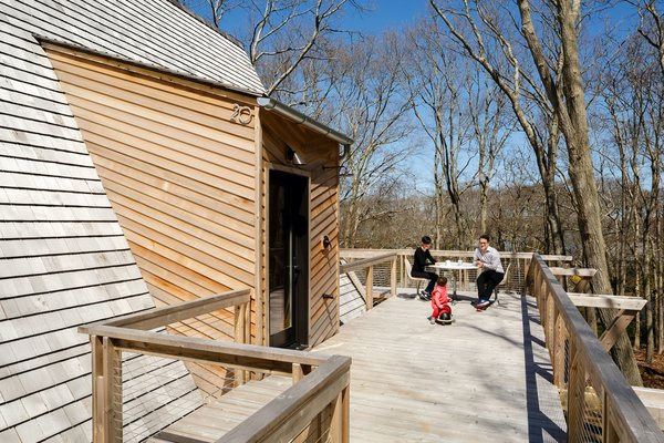 The new entry footbridge that leads from the road doubles as a deck that sits in the canopy of small oak trees, creating a feeling akin to being in a tree house.