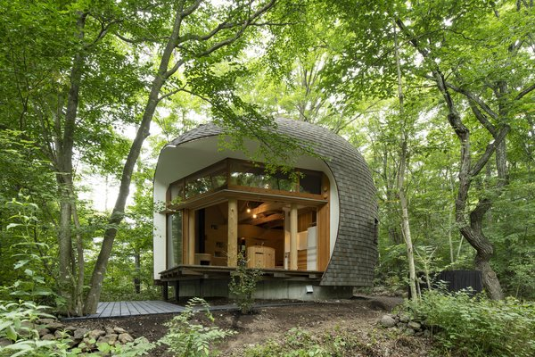 The home is elevated about four feet above the ground to avoid moisture from the forest floor. The entire ground-floor living space opens up to a timber deck through sliding glass doors.