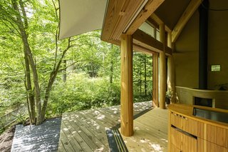 The timber deck is split over two levels—a ground level, which is built around existing trees, and another at the same level as the living space.