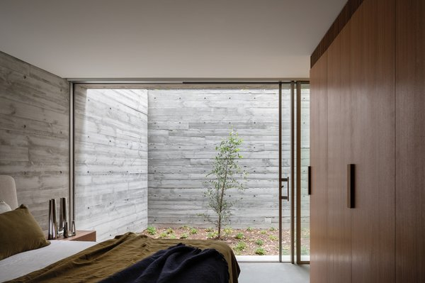 The master bedroom opens onto the sunken courtyard, which has a three-story wall to the rear. This wall is planted with creeping vines that will develop over time, creating a green space.