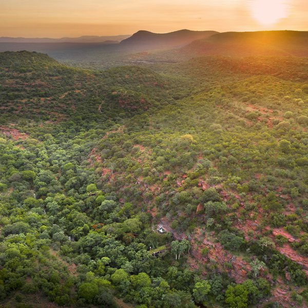 """The clients are passionate about nature conservation,' says architect Ant Vervoot. ""They know how every plant, insect, and animal fits into the greater ecosystem—their curiosity about the Bushveld is insatiable and inspiring. It really is an amazing thing to be around them in the bush."""