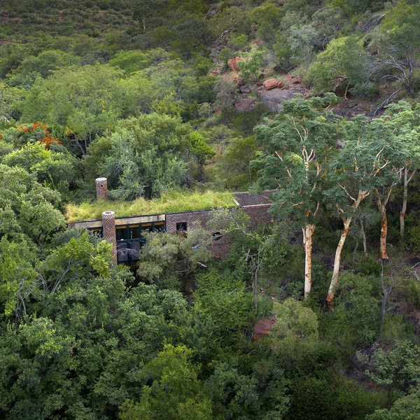 Inspired by ancient ruins, Frankie Pappas crafts a green-roofed, brick guesthouse that connects deeply with nature in the South African Bushveld.