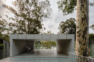 """The carport has been left open to allow visual connection to the water below from the road. """"A lot of the other houses on the street have carports that aren't very welcoming,"""" says architect Fraser Mudge. """"I think maintaining that connection through the site from the street is really nice."""""""