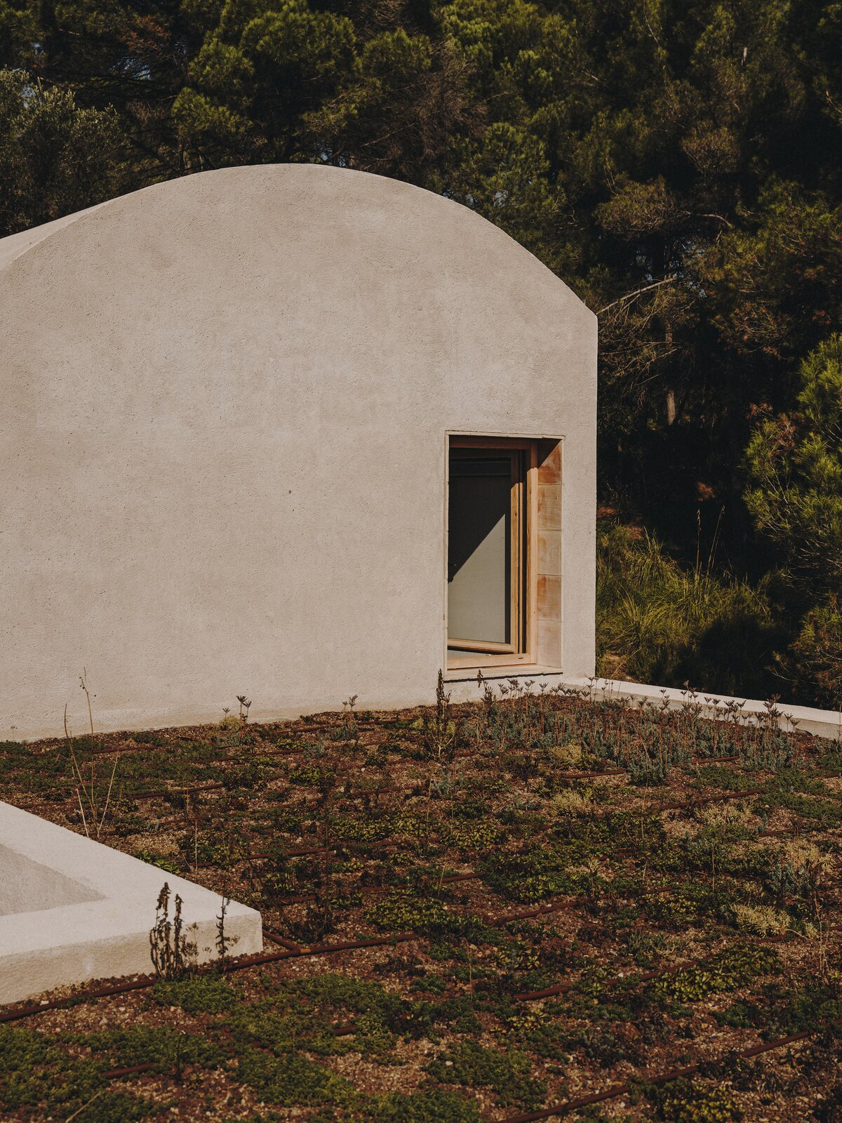 Roof garden of Casa Ter by Mesura.