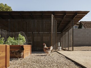 """""""Where most would use chicken wire and a box design, the clients wanted the chicken coop to complement the architecture of the house,"""" says architect Cavin Costello. """"So, the coop uses some elements of the main house, with the rusted, corrugated metal shed roof and vertical brise-soleil. It's a chicken coop design that can stand up to the elements of living in the desert."""""""