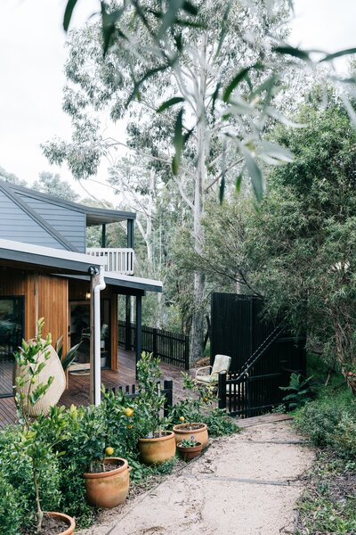 The garden path, lined with potted citrus and towering eucalyptus trees, leads from the carport to the deck and front door.