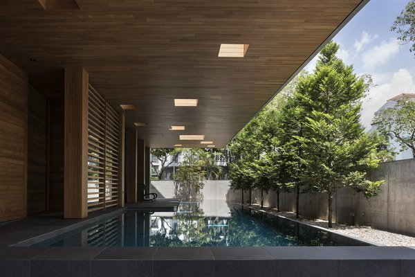 10 apertures of different sizes arranged above the pool illuminate the front yard with natural light.