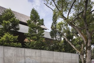 Tall trees and an extended roof canopy provide the house with plenty of privacy.