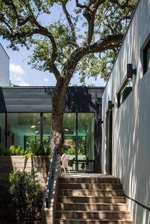 Windsor Residence by Dick Clark + Associates