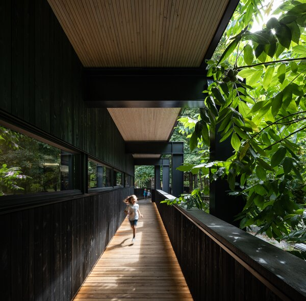 Leafy branches reach over the wall of the covered walkway which is supported by black structural steel. Windows offer a glimpse into the restaurant kitchen.