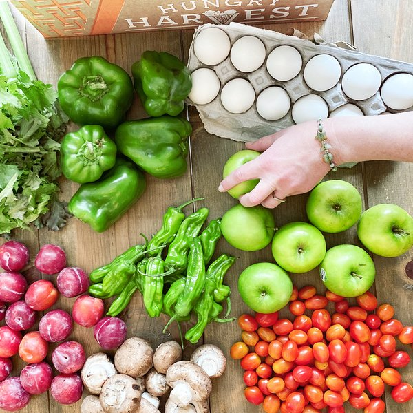Hungry Harvest sources fruit and vegetables that don't meet grocery stores' strict aesthetic standards for size, uniformity, and minor blemishes.