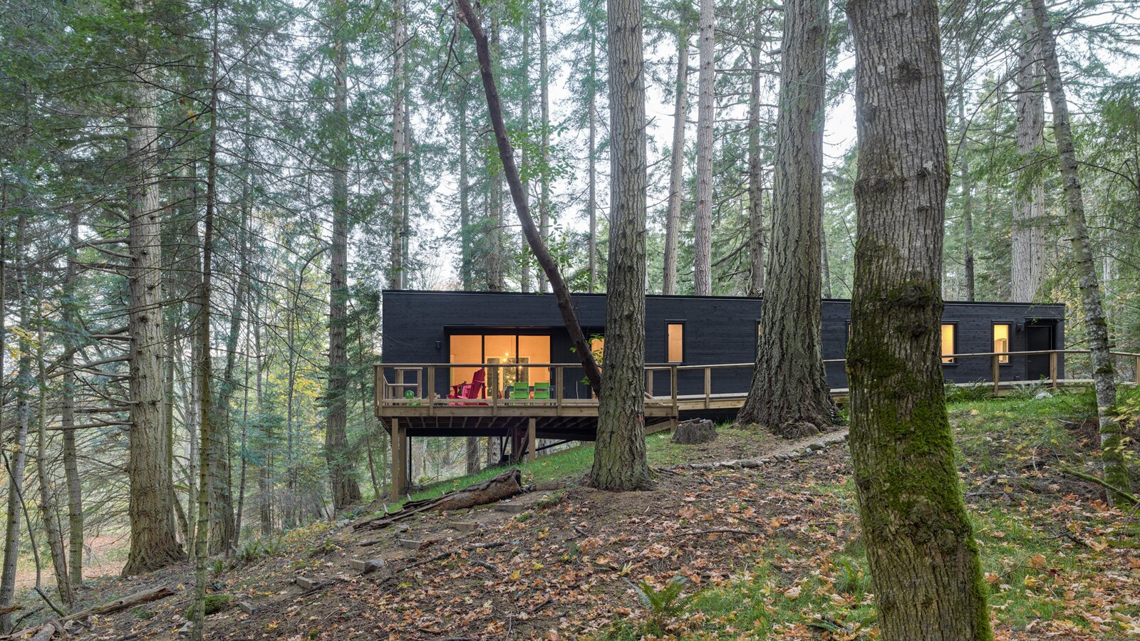 HPA Architecture and Design Salt Spring cabin exterior