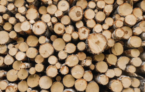 Setting out on an extensive search for the highest-quality and environmentally friendly materials on the market, the team landed on responsibly sourced birch and walnut veneer.