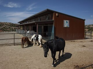 The design team used a prefab building system to construct the corrugated metal horse stables.