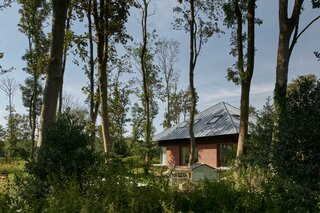 Towering ash and maple trees rise around the family's wooden bosvilla.