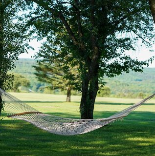 Hammock in the Orchard