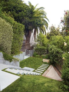 Concrete meets greenery in the backyard.
