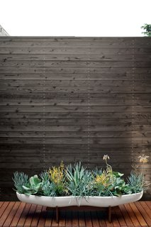 Michael and Tamami brought greenery to the master bath courtyard, which is lined with Eco Arbor Designs deck tiles, in the form of succulents in a ceramic Peanut planter by John Follis for Architectural Pottery from Vessel. Photo by Coral von Zumwalt.