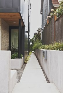 The architects installed concrete pavers on the north and east sides of the house with wooly thyme planted in between.