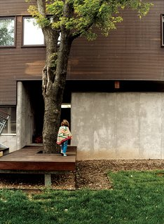 Architect Jamie Darnell built the decking, of ipe, to accommodate a tree by the entrance to the garage.