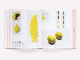 """Tests for dried and embroidered lemon skins for Scholten & Baijings's Vegetable series from 2009. These """"hyper-realistic, ingenious translations"""" mimic the texture of vegetables through fabric and embroidery."""