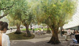 The plaza's defining feature is to be a grove of century-old olive trees originally seeded in the Shasta Cascade region of Northern California. The grove, which will include a crushed-stone walking path and flowering ground cover, will serve as a buffer between the museum and the busy street. Image courtesy of Diller Scofidio + Renfro.