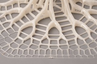 Want the Perfect Chair? Print It - Photo 5 of 6 - Advanced computer programs and 3-D printing allow for complex pattern replication in the finished product.