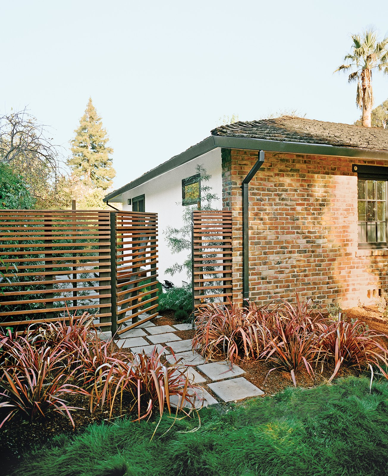 "Cox says he and Persin ""went on an ipe run"" after committing to the material for the deck, using it to build the slatted fence around the backyard. Rainbow Warrior New Zealand flax, a perennial, complements the material, while off-the-shelf pavers helped keep costs down.  Photo 5 of 6 in Bay Area Ipe-Clad Backyard Getaway"