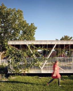 Austin's Casis Elementary School Teaching Garden - Photo 4 of 5 -
