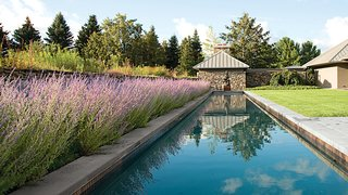 Landscape Design for All Climates - Photo 7 of 12 -