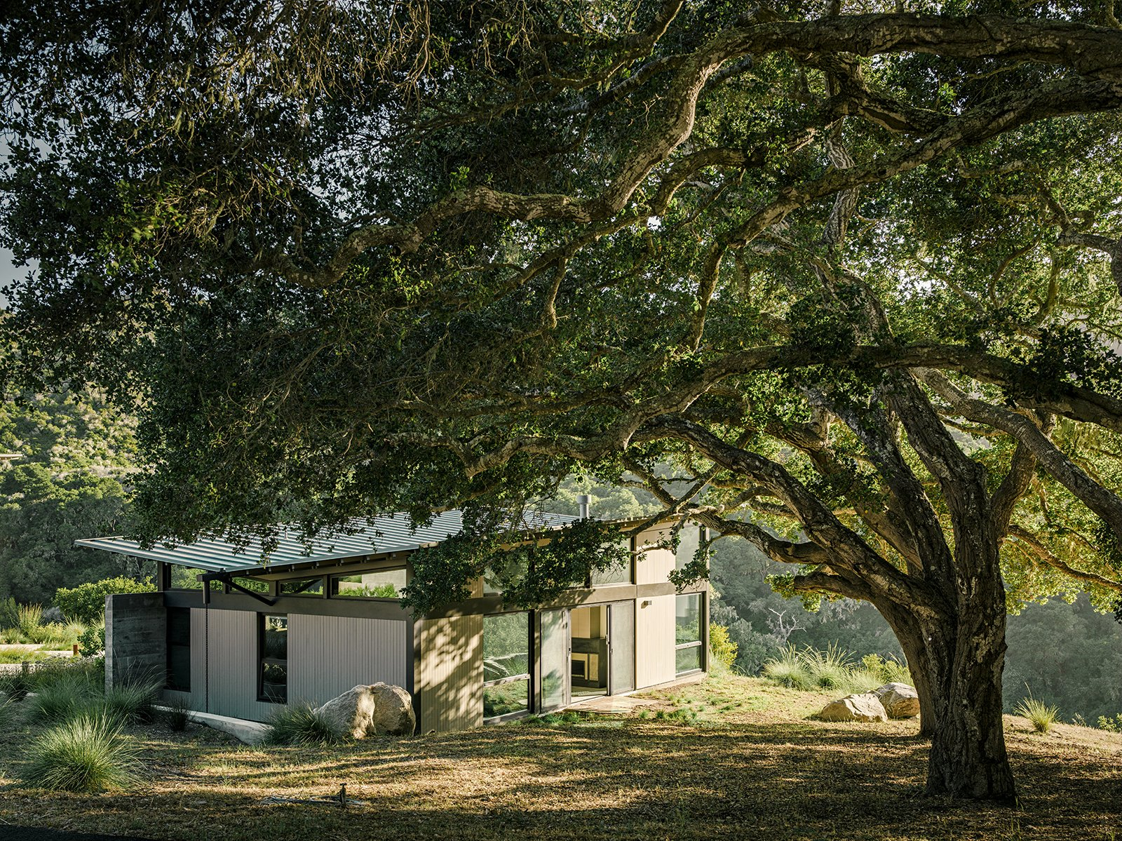 """The bedroom pavilion is mostly hidden, thanks to a massive native California oak—part of a grove. """"That's the good thing about oaks—they keep their leaves in the winter, so you don't have one view in the summer and another in the winter,"""" Suzanne says. Tagged: Exterior, Metal Roof Material, Metal Siding Material, House, Butterfly RoofLine, and Concrete Siding Material.  Photo 16 of 21 in I Love Modern Architecture from Sustainable Retirement Home in Tune with California Landscape"""