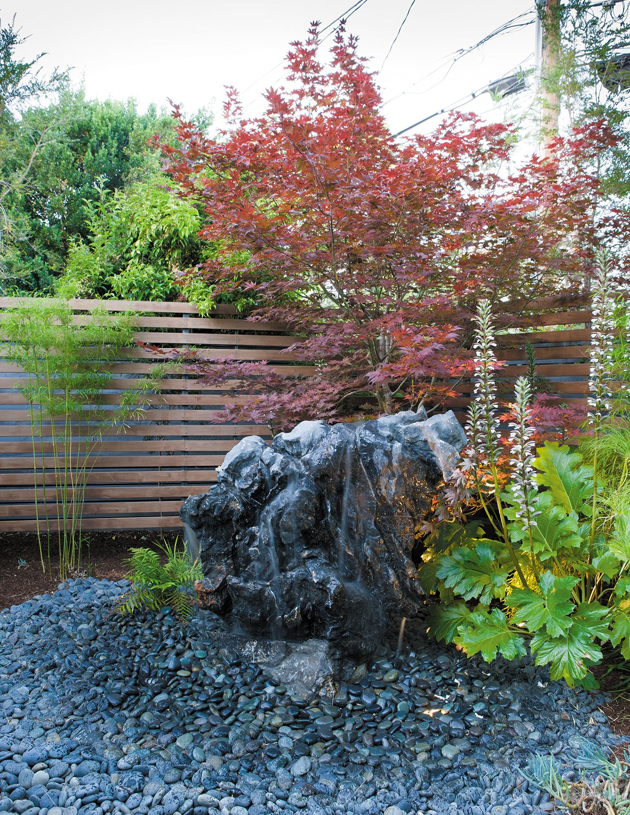 A contractor drilled holes in a boulder, creating a fountain that he placed in the backyard outside the master bedroom, where the sound of water lulls the Kreadens to sleep.  Photo 7 of 9 in Creative Landscape Design for a Renovated Eichler in California