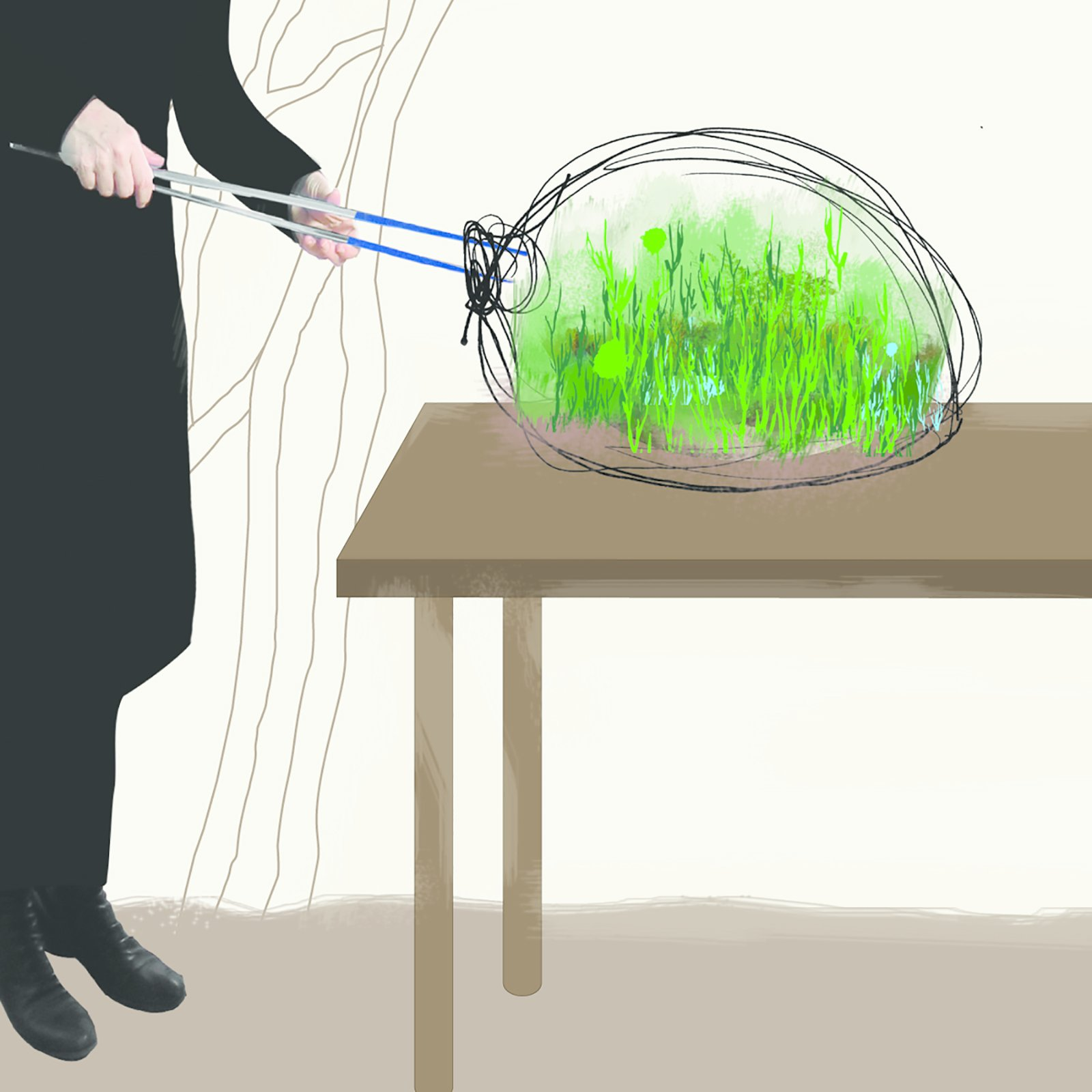 Designer Paula Hayes points out that surgical tweezers are a terrarium builder's best friend, since a blunter object could break the fragile glass of the container. Her go-to online retail source for tools is Black Jungle Terrarium Supply.  Photo 1 of 4 in How To Create a Small Space Garden