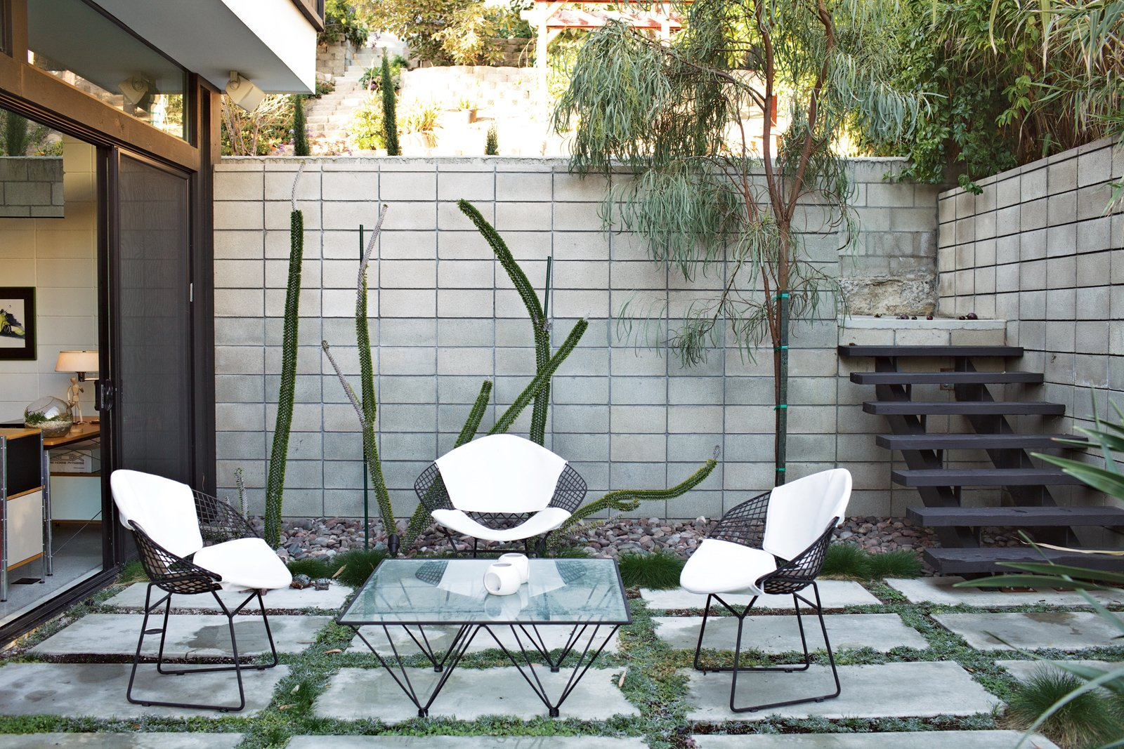 Modern home with Outdoor, Small Patio, Porch, Deck, Concrete Patio, Porch, Deck, Concrete Fences, Wall, Walkways, Hardscapes, Garden, Gardens, Trees, and Back Yard. Outside, a set of Bertoia chairs offer an appealing perch around a vintage glass-and-metal table. Photo  of Design Guide: San Diego