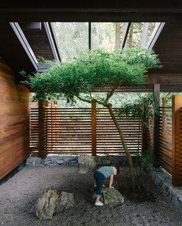 5 Reasons Why Landscaping and Bringing Plants Into Your Home Is So Valuable - Photo 2 of 11 -